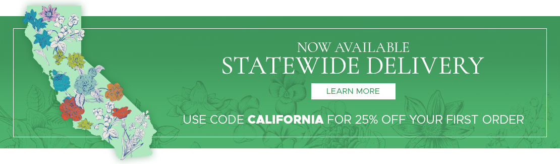 Statewide Cannabis Delivery