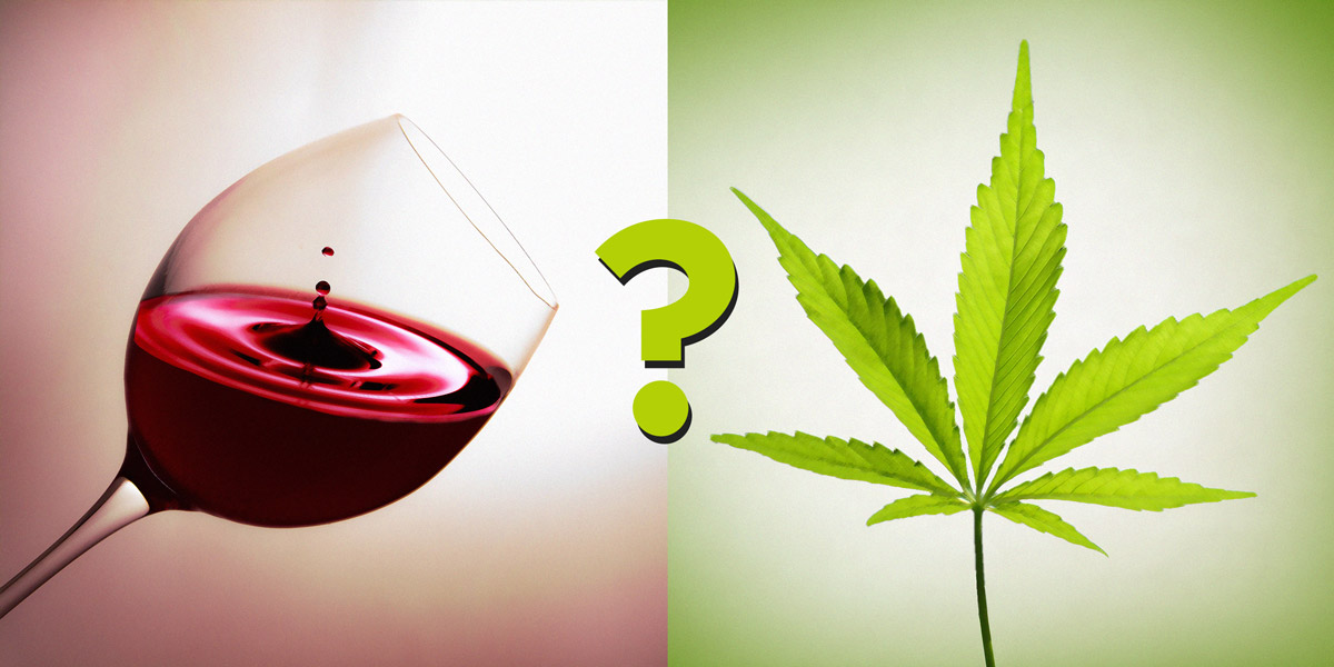 Why Cannabis Could be a More Enjoyable Alternative to Alcohol